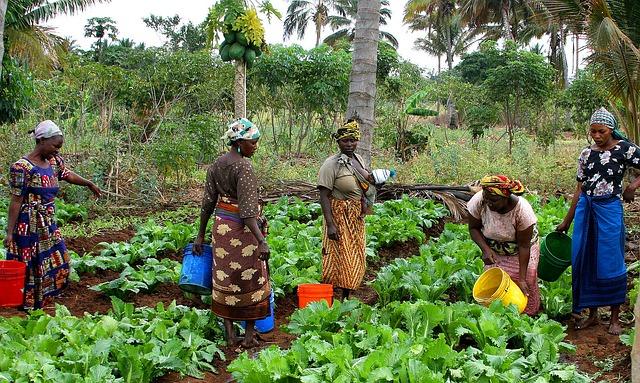 women gardens africa