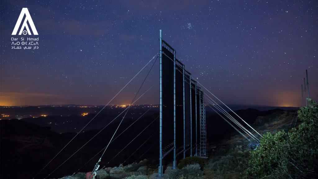 nets starry night.jpg